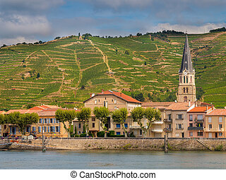 Tournon sur Rhone river town and Vineyards on the Hills of...