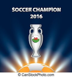 Soccer Champion 2016 with trophy and Wales flag.