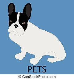 Pet dog icon flat style. Cute dog, patting dog, animal pet,...