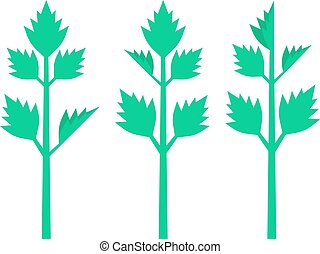 celery leaves on white background. concept of spring...