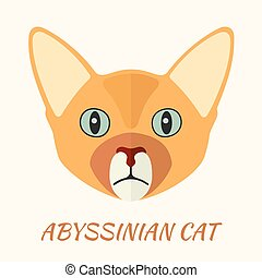 Abyssinian purebred cat portrait vector illustration in flat...