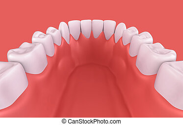 3D illustration of lower gum and teeth - 3D illustration of...