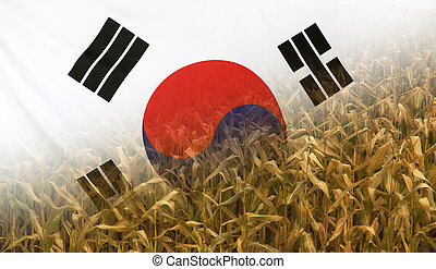South Korea Nutrition Concept Corn field with fabric Flag -...