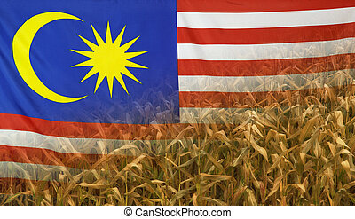 Malaysia Nutrition Concept Corn field with fabric Flag -...