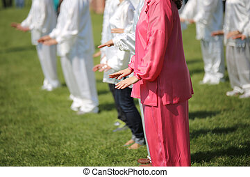 Tai Chi martial art Woman with pink silk dress perform the...