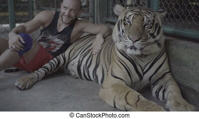 Man taking photo with big tiger - Tourist man smiling,...