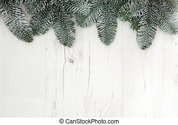Christmas Spruce Fir Background