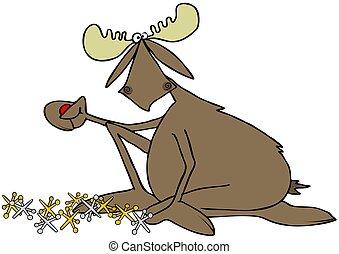 Moose playing a game of jacks
