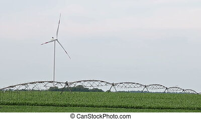 Wind turbine in the field