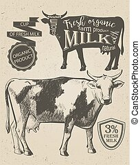 Cow vintage graphic - Cow in graphic vintage style, hand...