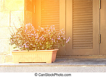 Window and flower pot with burst light
