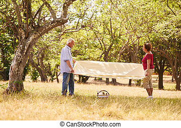 Retired Couple Senior Man And Woman Doing Picnic