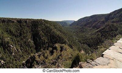 schlucht, an, Seite, Federn, Arizona, USA