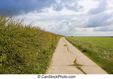 footpath with hawthorn hedgerow - a section of a scenic...
