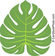 Leave icon vector illustration - Vector tropical leaves...