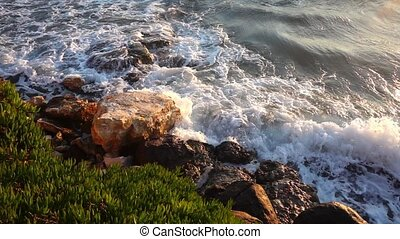 Sea Waves and Rocks