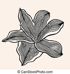 Monochrome abstract doodle flowers - Set of sketchy...