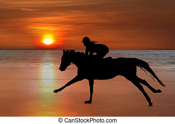 silhouette of a horse and rider galloping on beach -...