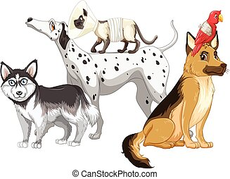 Sick dogs and cats illustration