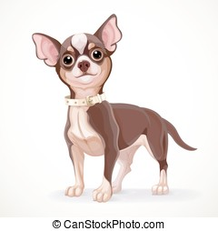 Cute little dark chihuahua dog vector illustration isolated...