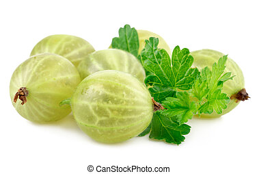 green gooseberry on white - green gooseberry fruit with leaf...