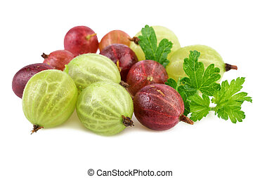red green gooseberries - red green gooseberry on white