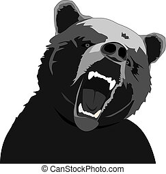 angry bear - vector angry bear illustration on white...