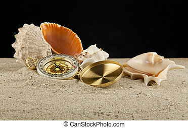 compass and cockleshells - Golden vintage compass and shells...