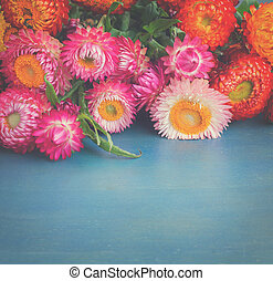 Bouquet of Everlasting flowers bouquet on blue table with...
