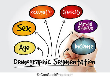 Hand writing Demographic segmentation mind map flowchart...