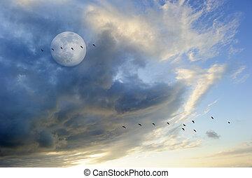 Birds Silhouettes Moon - Birds silhouettes moon is a flock...