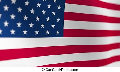 United States Flag USA
