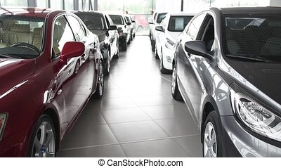 Buyer and Car Seller Make Deal - Buyer and car seller make...