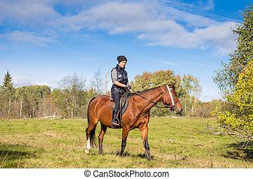 Elegant attractive woman riding a horse meadow - Elegant...