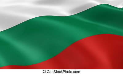 Bulgarian flag in the wind Part of a series