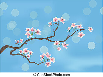 japanese cherry tree - This is the illustration of a...