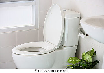 white toilet in modern home, white toilet bowl in cleaning...