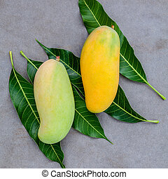 Fresh organic traditional thai mangoes high vitamins and...