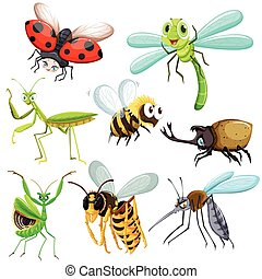 Set of different types of insects illustration