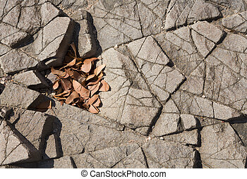 Basalt and leaves - Basalt, volcanic rocks near...