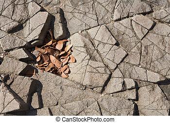 Basalt and leaves - Basalt, volcanic rocks near...