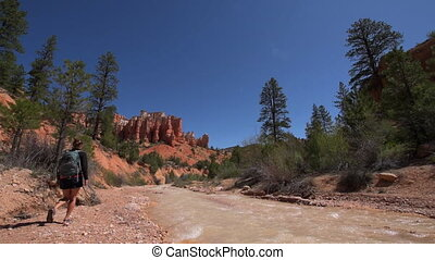 Hiking Bryce Canyon - Hiker walking alog the river away from...
