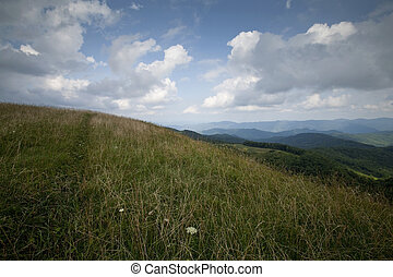 Max Patch, Pisgah National Forest - Max Patch, Appalachian...