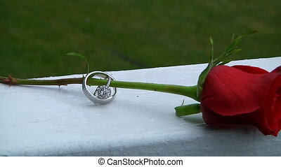 Set of wedding rings in rose taken closeup with water drops