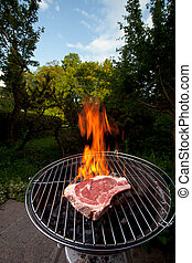 t bone steak on a grill outdoors