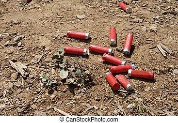 Shotgun shells - Spent shotgun shells