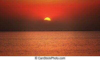 sunset sea 4k