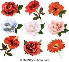 Set of a beautiful flowers isolated on a white background....