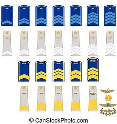Insignia in RF civil aviation