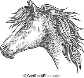 Heavy farm horse profile portrait in sketch style - Profile...